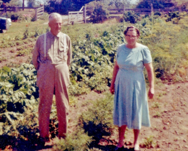 """Papa"" Wilson and Martha, his second wife, before their garden in Dungeness, WA, 1962, where they maintained a completely self-sufficient lifestyle (except coffee, tobacco, flour and sugar) for over a decade using goats for milk, cheese, even ice cream, as well as both egg-laying and frying chickens. Papa hated paying taxes, and moved to Washington after Colorado where he had moved with Martha onto a similar farm after retirement from the Forest Service precisely because there was no state income tax, enacted one."